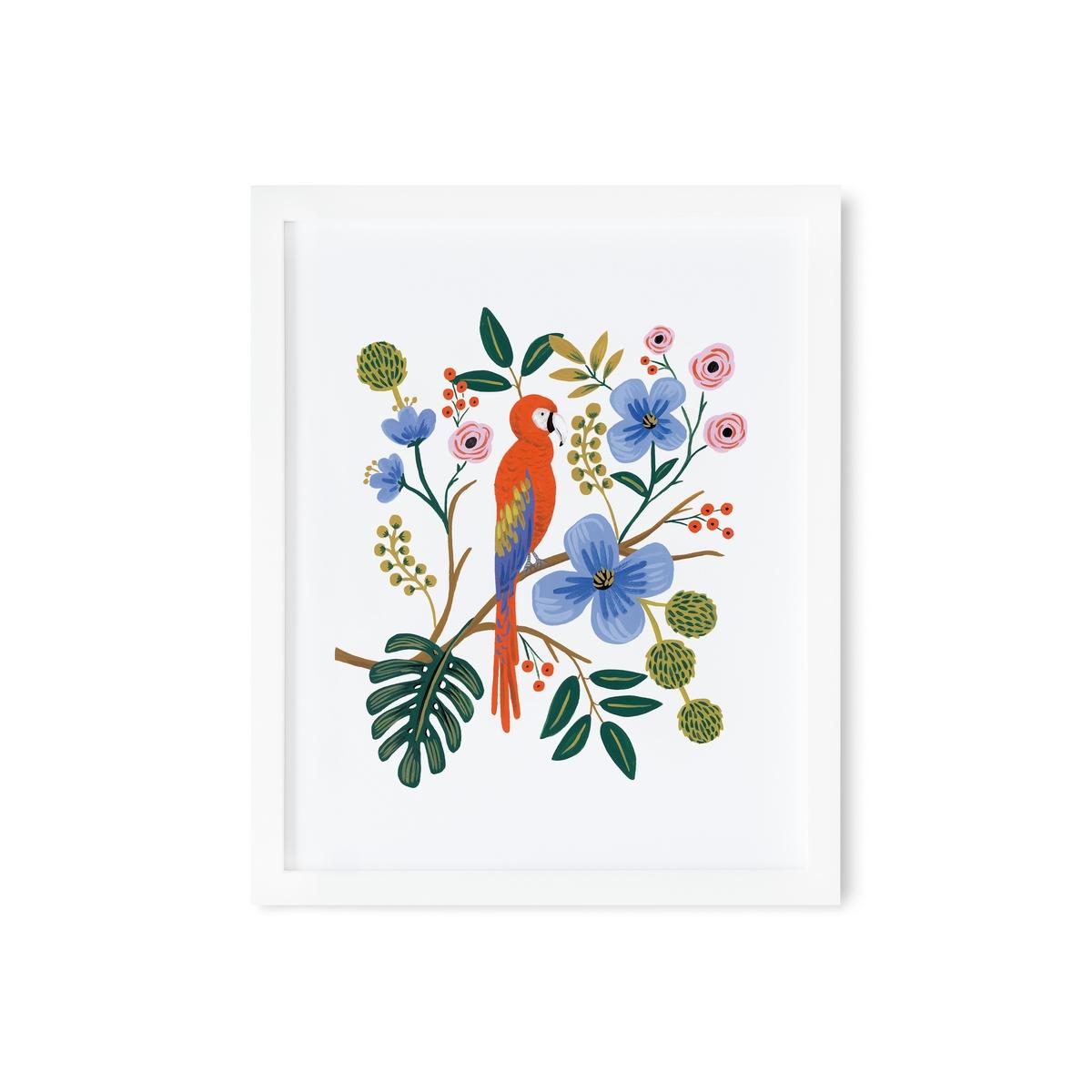"""Affiche & poster Affiches """"Perroquet"""" - 40.6 x 50.8 cm Affiches """"Perroquet"""" - 40.6 x 50.8 cm"""