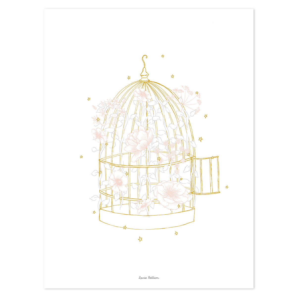 Affiche & poster Botany - Affiche Cage Fleurie Botany - Affiche Cage Fleurie