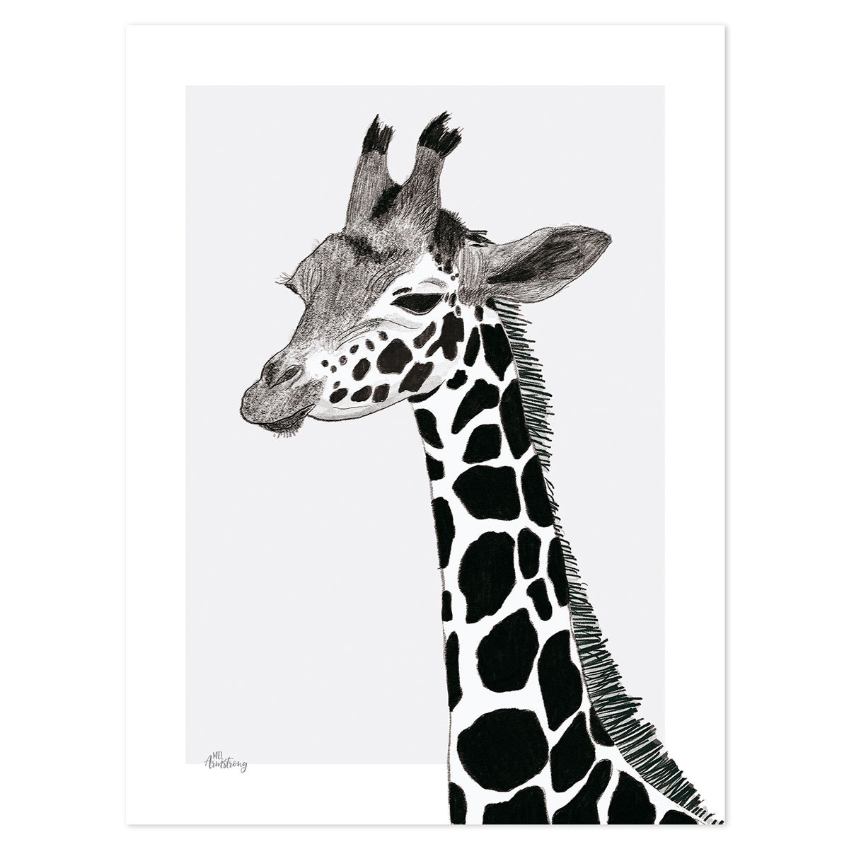 Affiche & poster Serengeti - Affiche La Girafe Serengeti - Affiche La Girafe