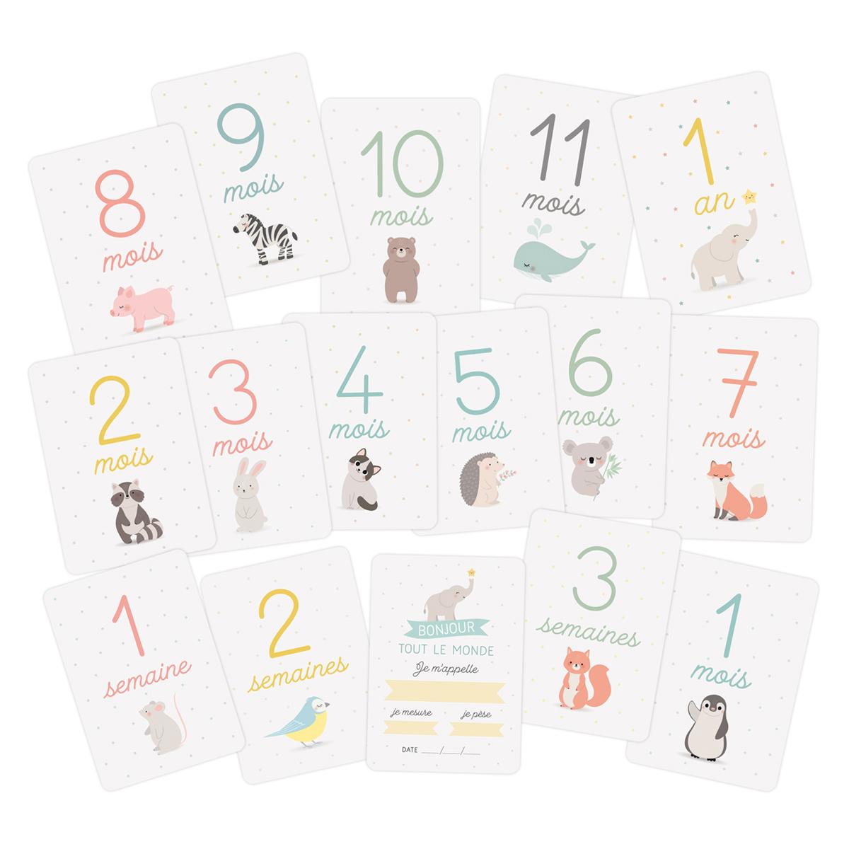 Livre & Carte Kit Cartes Premiers Mois de Bébé - Animaux