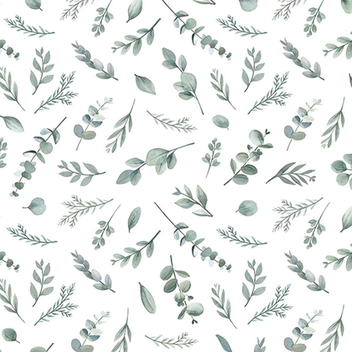 Papier peint Papier Peint - Eucalyptus Papier Peint - Eucalyptus