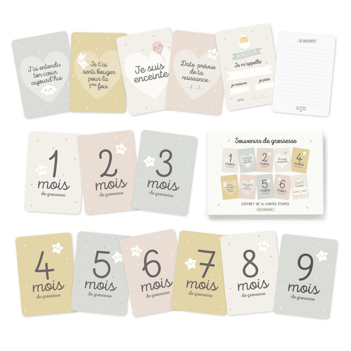 Livre & Carte Kit Cartes Etapes Souvenirs de Grossesse Kit Cartes Etapes Souvenirs de Grossesse