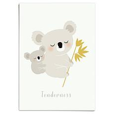 Achat Affiche & poster Affiche Koalas