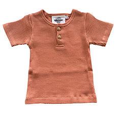 Achat Vêtement layette T-Shirt Manches Courtes Noe Bee - Cedre