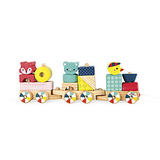 Achat Mes premiers jouets Train Baby Forest