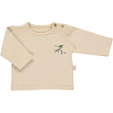Achat Vêtement layette Sweat Santana Amberlight