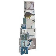Achat Mes premiers jouets Cubes en Carton Artics
