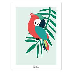 Achat Affiche & poster Tropica - Affiche Perroquet Vert