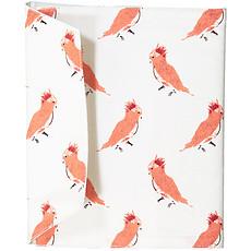 Achat Protège-carnet santé Protège-Carnet de Santé - Punky Birds