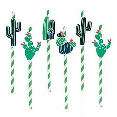 Achat Anniversaire & Fête Lot de 12 Pailles Cactus
