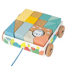 Achat Mes premiers jouets Chariot de Cubes à Promener Pure