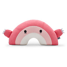 Achat Coussin Coussin Ricebow