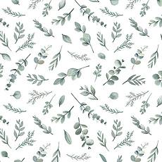 Achat Papier peint Papier Peint - Motif Eucalyptus