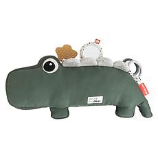 Achat Mes premiers jouets Jouet d'Activités Croco - Vert