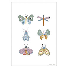 Achat Affiche & poster Poster Réversible Wild Flowers - Butterfly