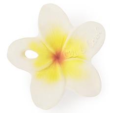 Achat Dentition Mini Anneau de Dentition Hawaï la Fleur