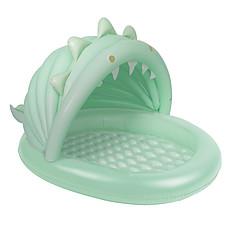 Achat Mes premiers jouets Mini Piscine - Dino