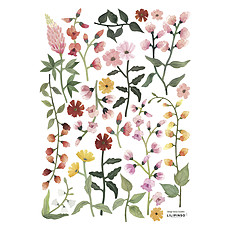 Achat Sticker Planche de Stickers Queyran - Fleurs Sauvages