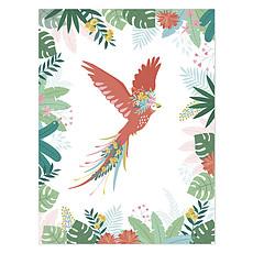 Achat Affiche & poster Affiche L'Envol du Perroquet