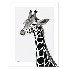 Achat Affiche & poster Affiche Serengeti - Girafe