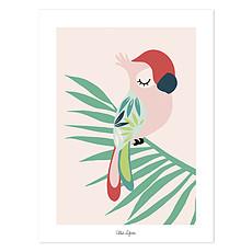 Achat Affiche & poster Affiche Tropica - Perroquet Rose